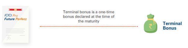 terminal bonus