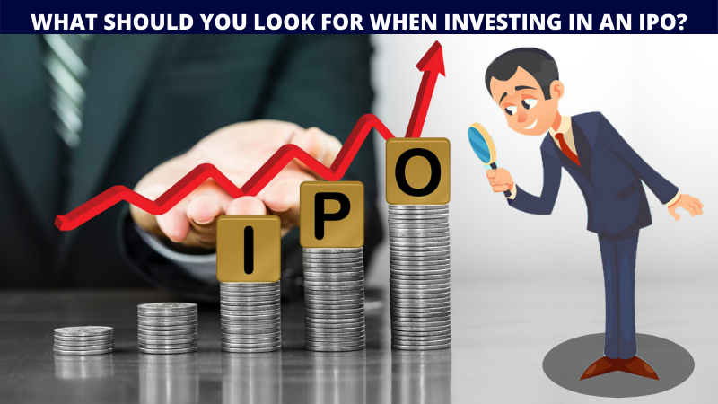 What should you look for when investing in an IPO